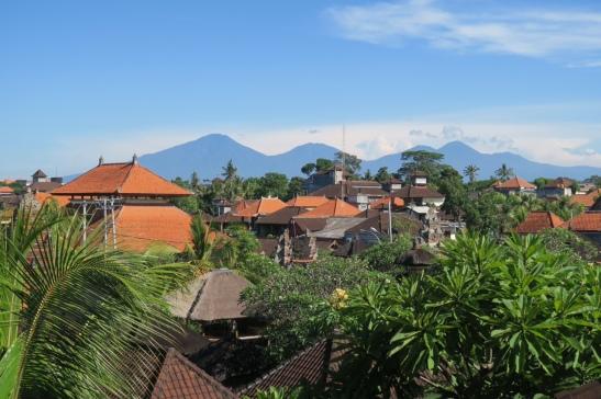 IMG_8013[243] Bali Ubud