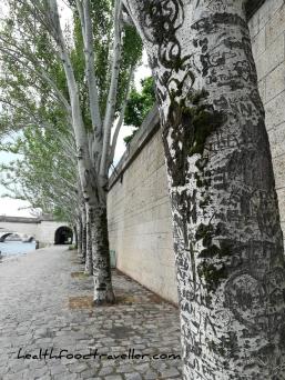 Seine Walk 3