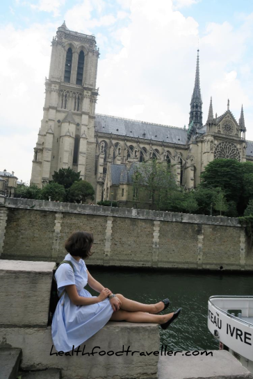 Notre Dame River View