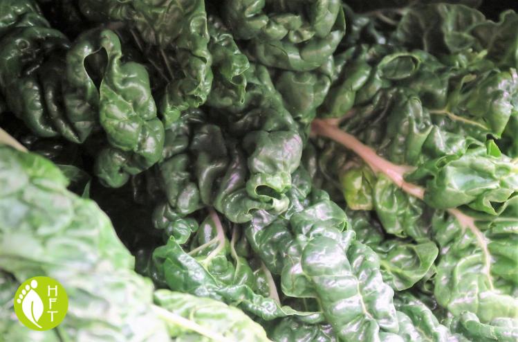 vegan and vegetarian source of iron green leavy veggies