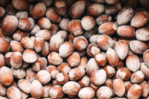 Hazelnuts by Jonas Svridas